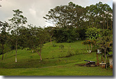Tropical farm in Puriscal. jpg
